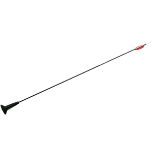 Arrows Archery Arrow